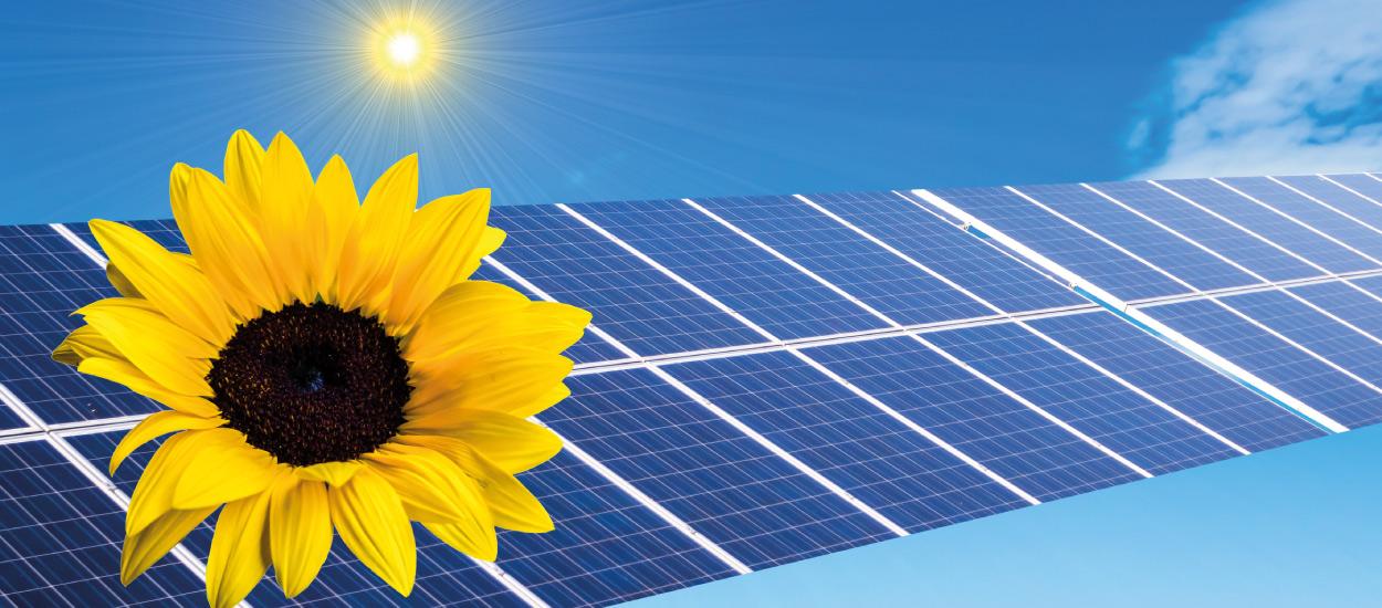 seniorenw-zur-wacht-solar